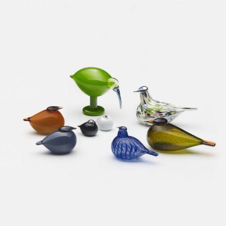 birds_group_3_jpg.jpg
